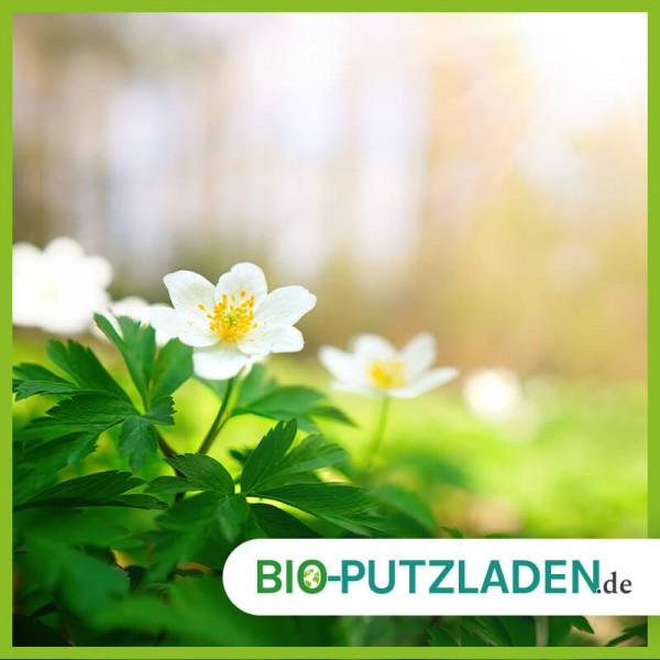 fruehjahrsputz-2_blog-bio-putzladen